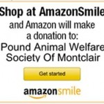 Shop at Amazon Smile