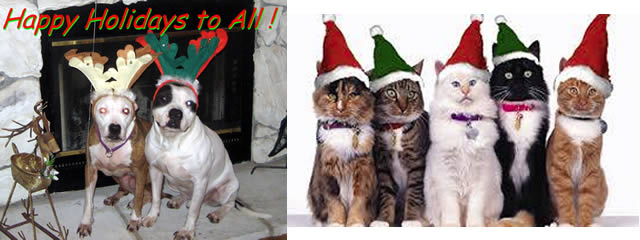 HAppy Holidays From PAWS