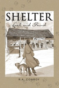 shelterlostandfound-cover